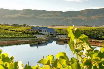 Full-Day Hemel-en-Aarde Wine Region...