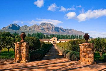 Tour enologico privato di Stellenbosch da Città del Capo