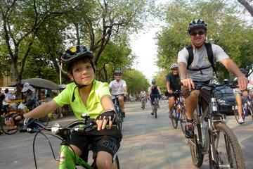 Heldagscykeltur till Mekongdeltat