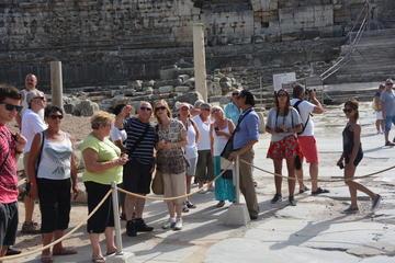 Excursão diurna particular em Éfeso...
