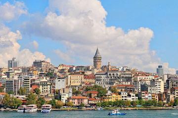 Visita a pie privada de Estambul