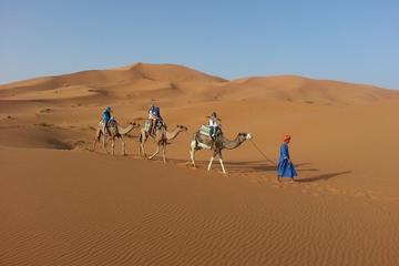 Noche en el desierto de Fez para grupos pequeños con paseo en camello...
