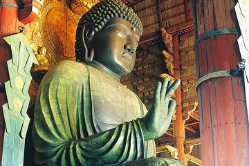 大阪発京都と奈良への日帰り旅行