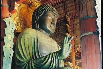 Day Trip by Bus from Osaka to Kyoto Arashiyama and Nara Todaiji Temple