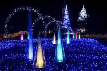Nabana-no-sato Winter Illumination