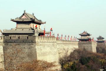Xi'an Half-Day City Tour - Shaanxi History Museum and Big Wild Goose Pagoda