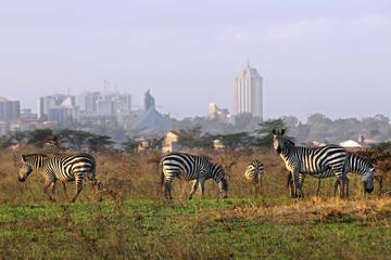 Full-Day Nairobi National Park, Elephant Orphanage, Giraffe Center and Karen Blixen Museum Guided Tour