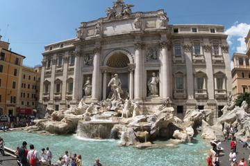 Private Guided Walking Tour of Rome