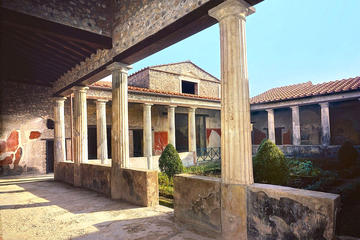 Skip-the-lines Private full day tour of Ancient Pompeii and Herculaneum with local guide