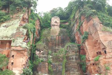 Chengdu Highlights Private Day Tour of The Panda Breeding Center and Leshan Giant Buddha