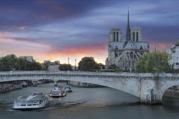 セーヌ川クルーズ、パリのイルミネーション、シャンゼリゼでのディナー