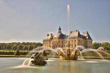 ヴォー ル ヴィコント城の宮殿でのディナーとキャンドルライトのイブニング ツ…