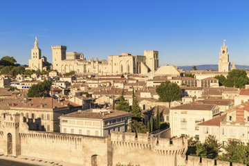 Excursion d'une journée à Avignon et...