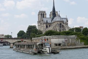Paris City-Tour mit dem Minivan, Seine-Flussfahrt und Mittagessen auf...