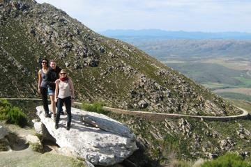 Full-Day Swartberg Mountain Tour from...