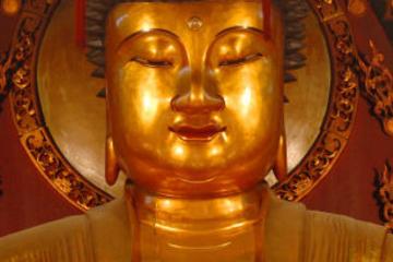 Tour di un giorno del meglio di Shanghai tra cui il Tempio del Buddha