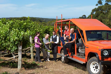 Voyager Estate Winery Tour and Tasting with Optional 3-Course Lunch...