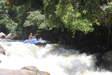 Rafting on the Mambucaba River in...