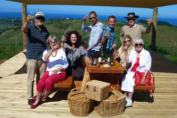 Half-Day Napier Wine Tour
