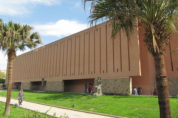half day tour visit luxor mummification   museums