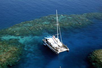 Kryssning med snorkling och dykning till Stora barriärrevet från ...