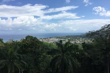 The Best of Port Antonio