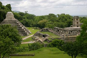 Coba and Tulum Ruins Tour Plus Cenote...