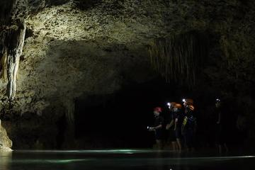 Privilege Route Private Adventure Tour at Rio Secreto Nature Reserve