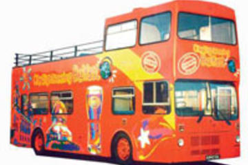 Escursione a terra a Belfast: Tour Hop-On-Hop-Off con City Sightseeing
