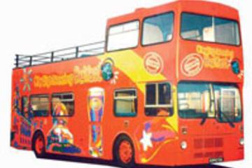 Excursão terrestre por Belfast: Excursão Turística em ônibus...