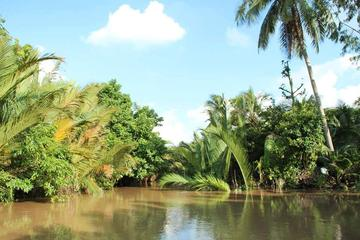 Private Mekong Delta Tour Including Ben Tre