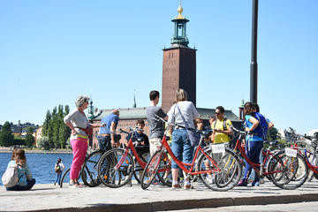 Best of Stockholm City and the National City Park Bike Tour