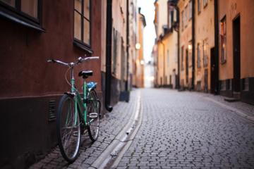 Private 2h Bike Tour: Best of Stockholm City and the National City ...