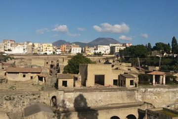 Ruins of Herculaneum Visitalia Art and Food Tour