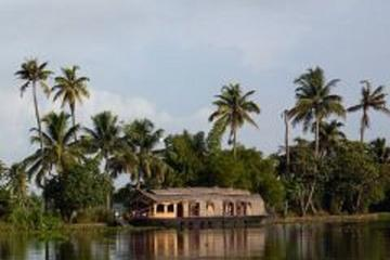 6-Night Kerala Tour from Kochi, Munnar, Alleppey, Kovalam to Trivendrum
