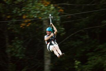 The Goliath Zipline Plus Activity Pass at Foxfire Mountain Adventure...