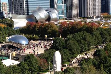 Recorrido turístico privado por Chicago: Autobús de lujo para 12...