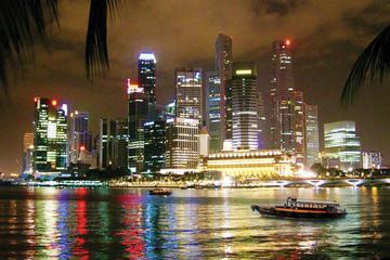 シンガポール ナイト ツアー:ガーデンズ バイ…
