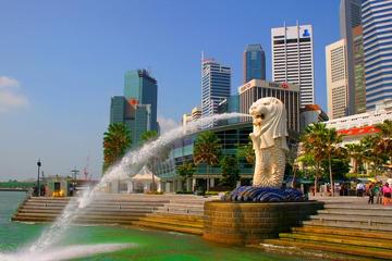 Excursão de meio dia pela cidade de Singapura