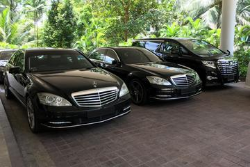 Private Singapore Departure Transfer: City to Airport or Cruise...