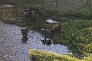 5-Day Luxury Tour of Etosha National Park from Windhoek