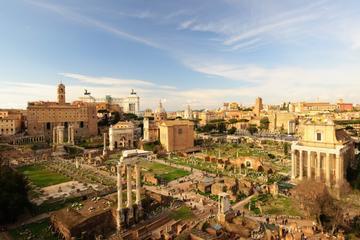 Evite las colas: Visita guiada oficial al Coliseo, la Colina Palatina...