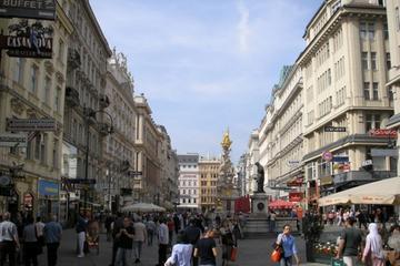 Tour privato di un giorno a Vienna da Budapest