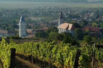 Weinrundfahrt zu Tokaj-Region von...
