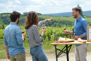 Full-Day North Burgundy and Chablis Wine Tasting Tour from Paris