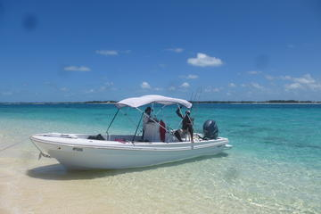 Private Nassau Snorkel and Sightseeing Cruise