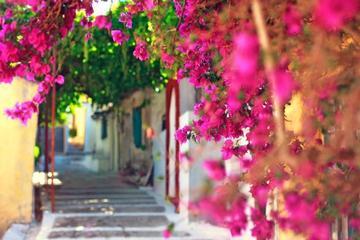 Corfu's Hidden Secrets Walking Tour and Boat Ride
