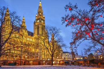 Excursão de Natal em Segway por Viena