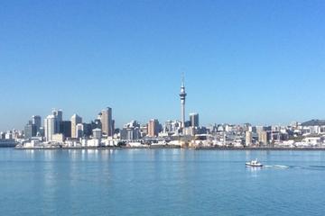 Ganztägige Stadtrundfahrt durch Auckland