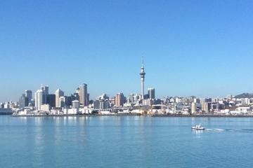 Tour di un giorno intero del meglio della città di Auckland